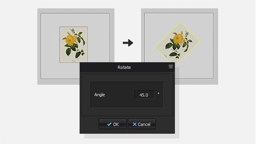 Rotation Angle Input